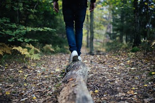 Koło równowagi – ćwiczenie dla Ciebie