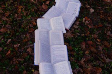"Książki Miesiąca #6 ""Dom duchów"", ""Saturnin"", Nosowska"